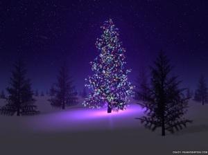 beautiful_christmas_tree