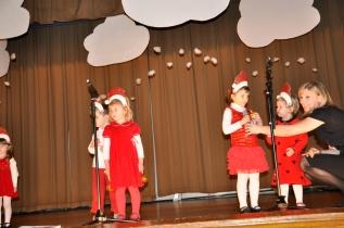 Ema December 2012-Kaledine LT eglute 037