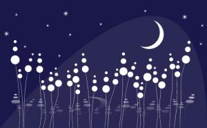 dreamy_night